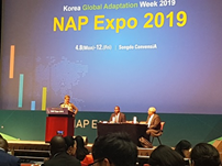 Korea: Adaptation Workshop at the NAP Expo 2019 in Incheon